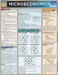 Microeconomics: Quick Study