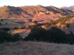 Shell Ridge at Sunset, Walnut Creek, CA