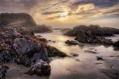 Paul Kozal: Shell Beach, Low Tide, The Sea Ranch