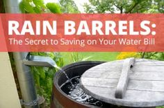 How to Save Money on Your Water Bill by Recycling Rainwater