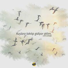 """""""Kuşlara takılıp gidiyor aklım"""" Cahit Zarifoğlu"""