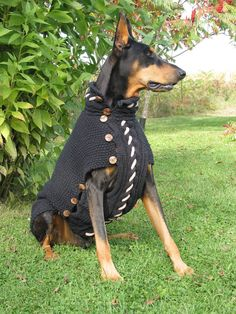 Dog Sweater BLACK JACK in black cotton for large by GabriellaSTYLE