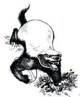 Honey Badger don't take no ... by DrStrangebob