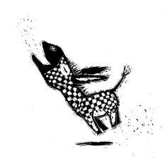 Het grote Annie boek - Martijn van der Linden - ILLUSTRATOR