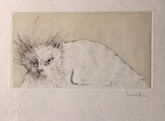 Les Etrangers 1 | by Leonor Fini Crazy Cat Lady, Crazy Cats, Big Cats, All The Small Things, Gravure, Book Illustration, Cat Art, Les Oeuvres, Printmaking