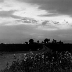 Robert Adams: Summer Nights - Platteville, Colorado, 1980