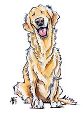 Love the drawing style - perfect for a pet portrait. Golden Retriever Caricature Illustration by John LaFree.