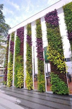 Vetical Gardens A vertical garden can be produced inexpensively with yard netting as well as a few of your preferred climbing plants. DIY Projects - Develop a Do It Yourself Outdoor Living Wall Surface Vertical Garden Planter Jardin Vertical Artificial, Vertical Green Wall, Jardin Decor, Green Facade, Pot Jardin, Walled Garden, Backyard Garden Design, Garden Kids, Garden Bar