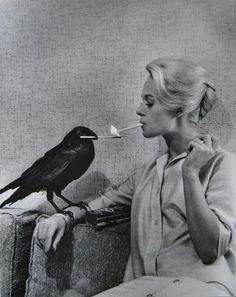 Tippi Hendren~The Birds