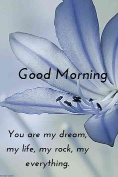 Are you looking for images for good morning images?Browse around this site for unique good morning images ideas. These enjoyable quotes will make you enjoy. Good Morning Flowers Pictures, Good Morning Kisses, Good Morning Nature, Good Morning Love Messages, Good Morning Quotes For Him, Good Morning Beautiful Images, Good Morning My Love, Good Morning Texts, Good Morning Photos