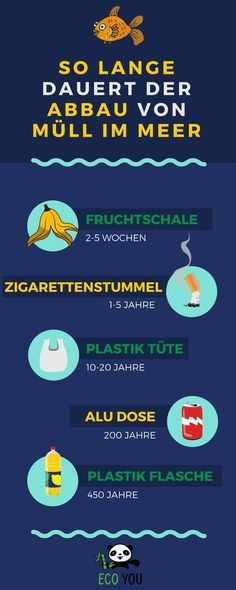 The best 101 tips for your plastic-free life - Die besten 101 Tipps für dein plastikfreies Leben – 2019 That& how long it takes to dump garbage in the sea. Here we show you 6 alternatives for everyday life. Martial Arts Club, Anaerobic Exercise, Agility Training, Yoga For Flexibility, Infographic Templates, Kindergarten, About Me Blog, Take That, Life Hacks