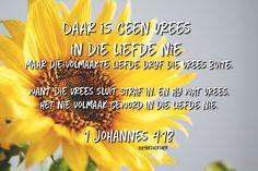 'Daar is geen vrees in die liefde nie; maar die volmaakte liefde dryf die vrees buite, want die vrees sluit straf in, en hy wat vrees, het nie volmaak geword in die liefde nie. ' I JOHANNES bybelverse in afrikaans Afrikaans Quotes, Till Death, Faith In God, Bible Verses, Spirituality, Sayings, Shruti Hasan, Words, Lyrics