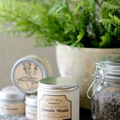 Soy Candles, Candle Jars, Mason Jars, Glass Containers, Glass Jars, Lavender Candles, Flint Glass, Vanilla Beans, Remove Labels