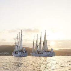 Windstar Cruises Travel Stories From Around The World Sailing Cruises, Yacht Cruises, Sailing Ships, Small Ship Cruises, Hidden Beach, Cruise Travel, Luxury Travel, Caribbean, Around The Worlds