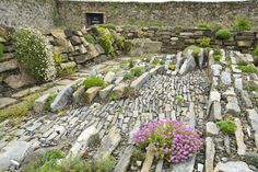 Crevice Garden at Lissadell by Pamela Cassidy-----Love Rock gardens