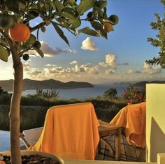 Ideas Travel Inspiration Photos Wanderlust For 2019 Orange Aesthetic, Summer Aesthetic, Travel Aesthetic, Mellow Yellow, Summer Vibes, Summer Sun, Beautiful Places, Colours, Design Inspiration