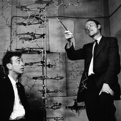 Watson and Crick with their model of DNA helix