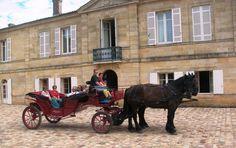 Venez découvrir le Château Marquis de Vauban et la Citadelle de Blaye au bord de la calèche en réservant votre visite sur Wine Tour Booking