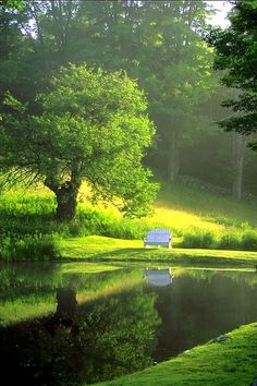 Lake Bench, Burgundy, France.