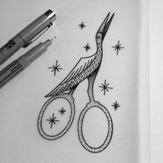 Scissor/Bird ➵ Instagram: tomapegaz