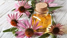Jak správně pěstovat lichořeřišnici větší (Trapeoleum majus). Recepty, jak využít jedlé květy lichořeřišnice. Odrůdy lichořeřišnice. Jak a proč léčí Sore Throat Relief, Flu Remedies, Herbal Remedies, Natural Remedies, Herbal Tinctures, Herbalism, Clove Tea, Raspberry Leaf Tea, Vitamins