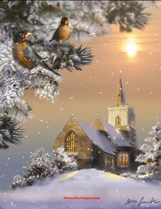 Christmas, Church, Snow, Christmas Trees, Animated Gifs, Birds, Snow Scene, Christmas Scene, Winter Scene .