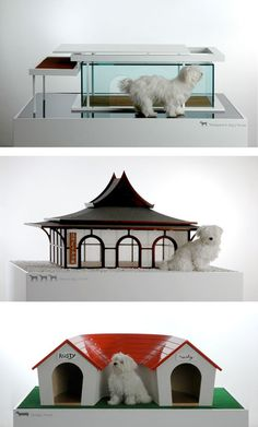 doghouse... http://dog-milk.com/dog-is-a-god-by-marco-morosini/