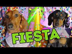 CUMPLI 4 AÑITOS!! | LOS POLINESIOS VLOGS - YouTube