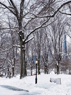 Nyc Life, Central Park, Photo And Video, Outdoor, Instagram, Outdoors, Outdoor Games, The Great Outdoors