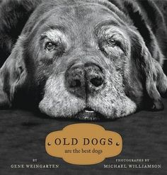 "If you've ever lived with an old ""friend"", this book will make you smile!"