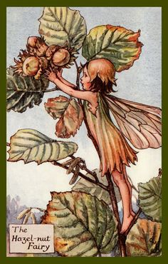 The Hazelnut Fairy by Cicely Mary Barker from the 1920s. Quilt Block of vintage fairy image printed on cotton. Ready to sew.  Single 4x6 block $4.95. Set of 4 blocks with pattern $17.95.