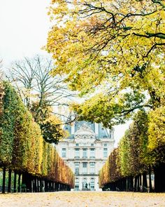 Unexpected Places to Propose in Paris | Martha Stewart Weddings