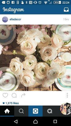 Odds & Ends: Spring Flower Guide - Lauren Conrad Beautiful Flower Arrangements, Beautiful Flowers, Colorful Apartment, Enchanted Florist, Ranunculus, Elle Decor, Lauren Conrad, Event Decor, Spring Flowers