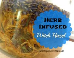 The Wonders of Witch Hazel - A Must Have for Your First Aid Cabinet   PreparednessMama