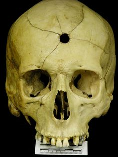 1000+ images about Skulls and Bones on Pinterest