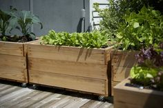 Custom Small Cedar Vegetable Beds for a deck or patio. Beds are on casters for easy maintenance. Design/Build by Seattle Urban Farm Company