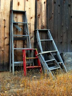 Collection of old ladders that make wonderful flower pot holders shelves, baby chairs at the table if you don't have a youth chair. Good for everything.