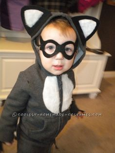 Coolest Baby Racoon Costume ... This website is the Pinterest of costumes