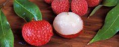 Litchi : Valeur nutritive et vertus thérapeutiques du fruit Litchi Fruit, Lychee Fruit, Crassula Ovata, Vitamin D Benefits, Health Benefits, Fruit Benefits, Best Fruits, Healthy Fruits, Lychee Tree