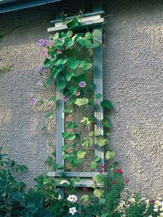 Add height to your garden with a wall trellis! Find out how to make one here: http://www.bhg.com/home-improvement/outdoor/pergola-arbor-trellis/how-to-build-a-trellis/?socsrc=bhgpin051413walltrellis