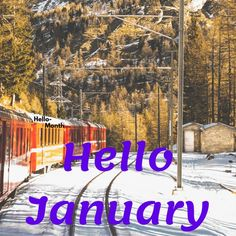 Hello January Pictures January Pictures, Monthly Pictures, January Month, Hello January, Cover Pics For Facebook, Celebration Images, Birth Flowers, Pictures Images, Hd Wallpaper