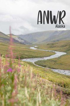 Day Hike, Arctic, Alaska, Paths, Wildlife, Hiking, Adventure, Mountains, Travel