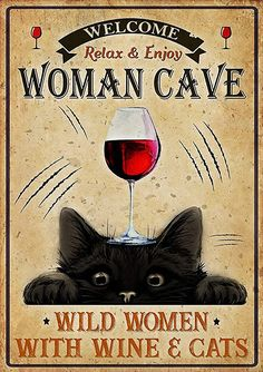 Crazy Cat Lady, Crazy Cats, Funny Animal Memes, Funny Cats, Black Cat Art, Black Cats, Black Cat Appreciation Day, Cat Wine, Cat Posters
