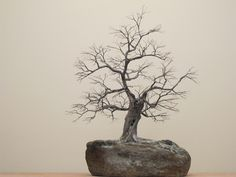 Copper wire tree - a funeral urn