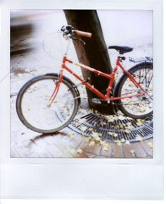 Bicycle ~ @ paper thin
