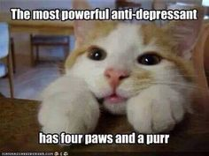 The most powerful antidepressant