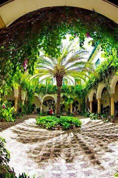 "Palacio de Viana Courtyard: ""The scented gardens of Cordoba"" referred to in the movie Malaga, Granada, Oh The Places You'll Go, Places To Travel, Travel Destinations, Beautiful World, Beautiful Places, Amazing Places, Cordoba Andalucia"