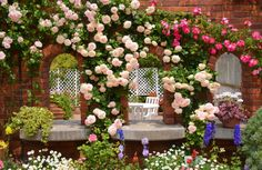 Rose Garden Desktop Background | 1750 | hostelgarden.net