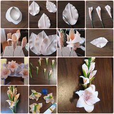 Flor modelada - pasta de goma, masa flexible, fimo, porcelana fria