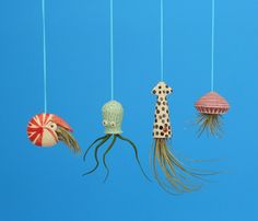 Miniature Hanging  Air Planter Collection Live от CindySearles